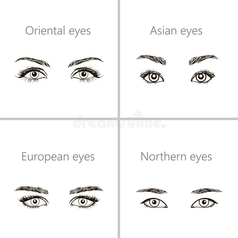 Download Ensemble De Différents Types De Yeux Illustration de Vecteur - Illustration du mongoloid, yeux: 76082282