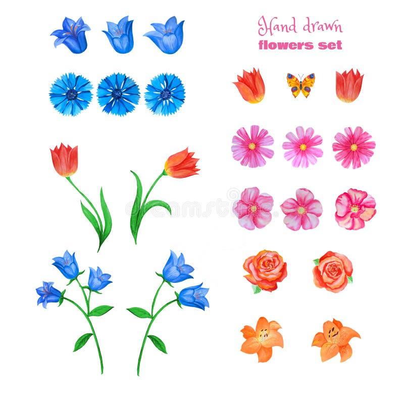 Ensemble de diff?rentes fleurs d'isolement sur le blanc Pavots, tulipes, roses, lis, bleuets, cloches bleues et autre illustration stock