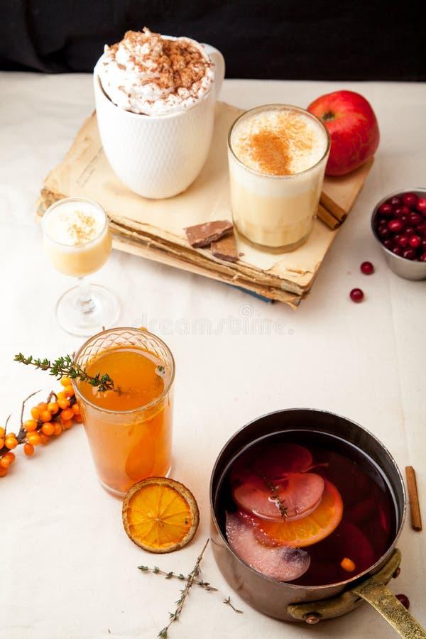 Ensemble de divers cocktails d'hiver photo stock