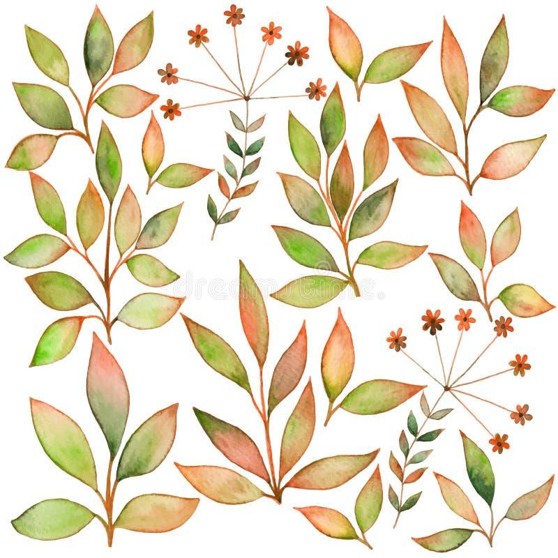 Ensemble de feuille d'aquarelles Éléments pour votre conception Laisse le thème illustration stock