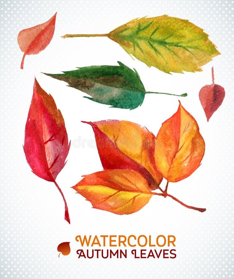 Ensemble de feuille d'automne d'aquarelle collection d'illustration de feuilles tirées par la main d'aquarelle