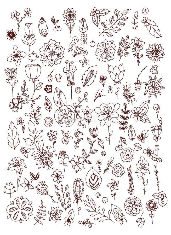 Ensemble de feuilles blanches noires de fleurs de griffonnage main d'éléments dessinée par conception Brown et blanc cru illustration libre de droits