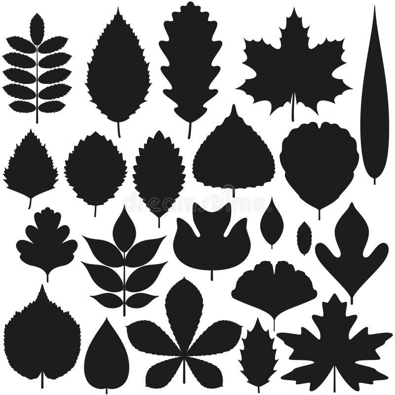 Ensemble de feuilles d'arbre Icônes de silhouette illustration libre de droits