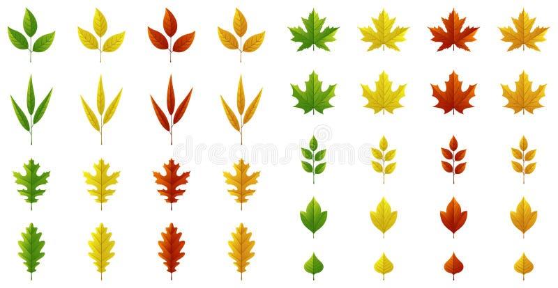 Ensemble de feuilles d'automne sur le fond blanc, pour toute occasion illustration libre de droits