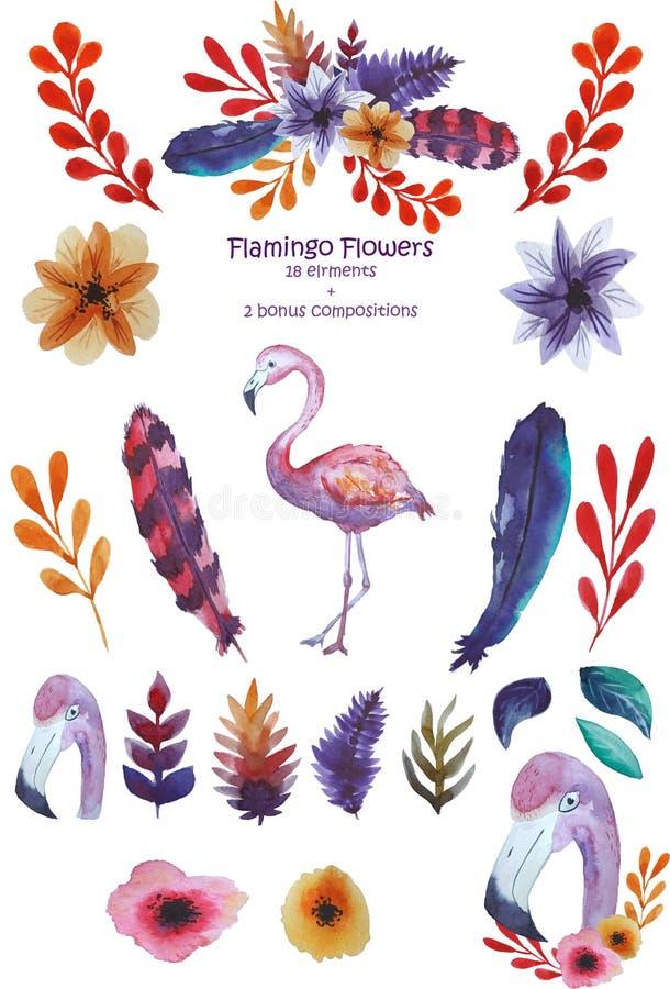 Ensemble de flamant illustration stock