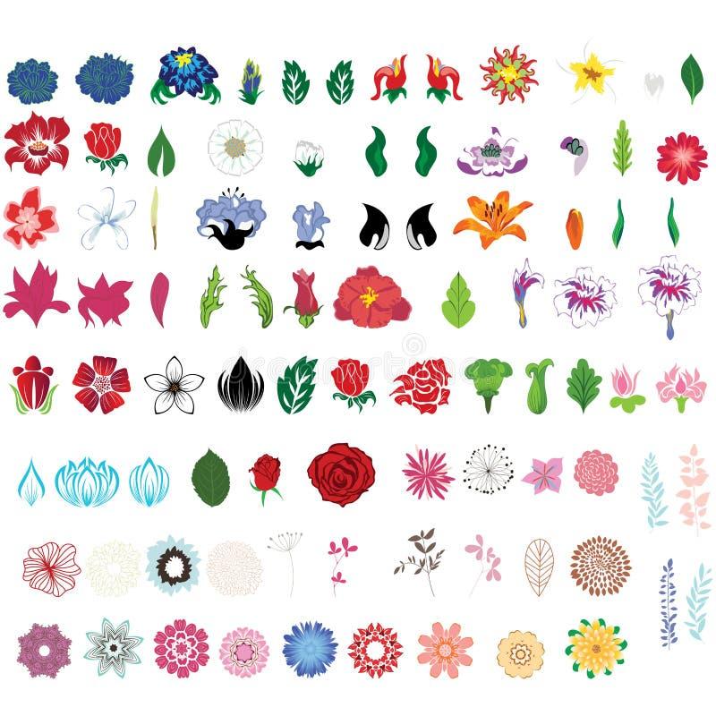 Ensemble de fleur illustration de vecteur