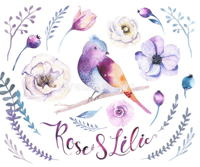 Ensemble de fleur de boho d'aquarelle Décoration b floral de ressort ou d'été illustration de vecteur