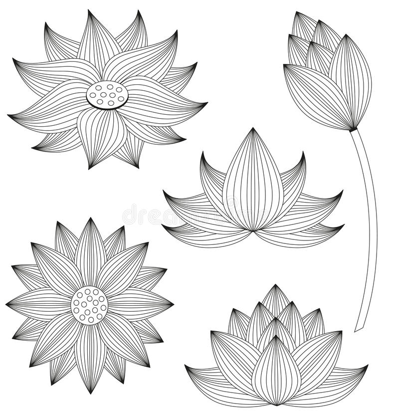 Ensemble de fleur de Lotus illustration libre de droits