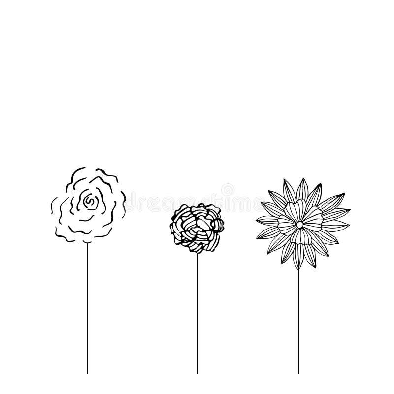 Ensemble de fleurs de champ images stock
