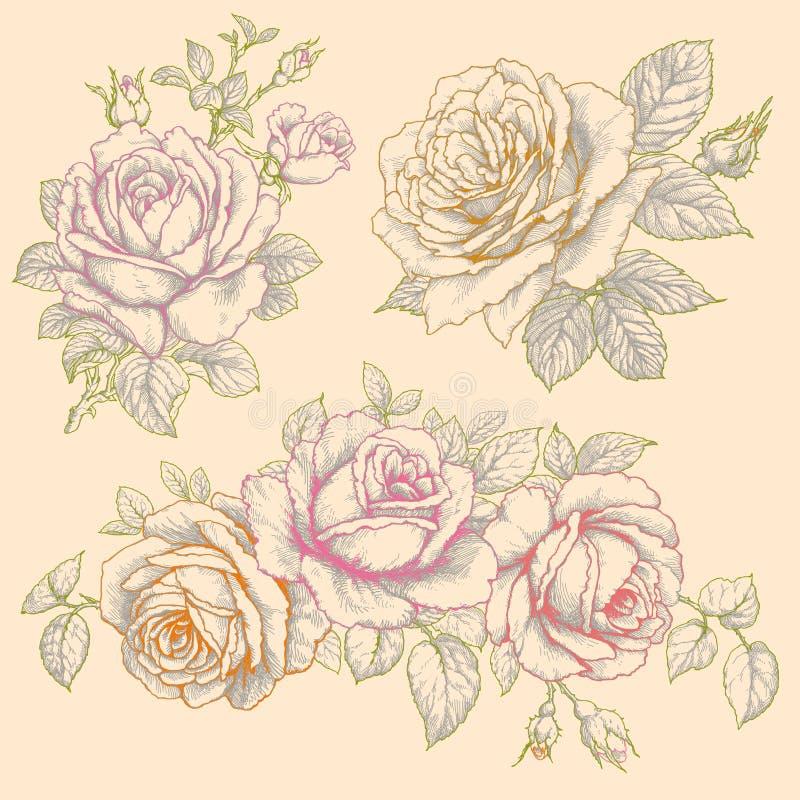 Ensemble de fleurs roses Dessin multicolore illustration libre de droits