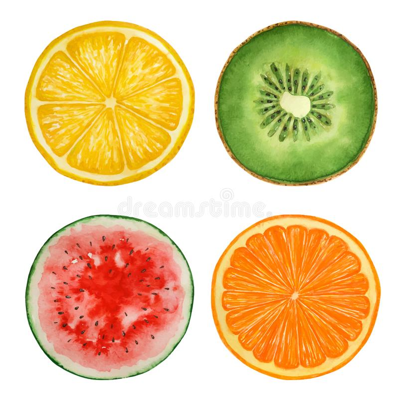 Ensemble de fruits d'aquarelle et de pastèque, texture de peinture, vecteur illustration de vecteur