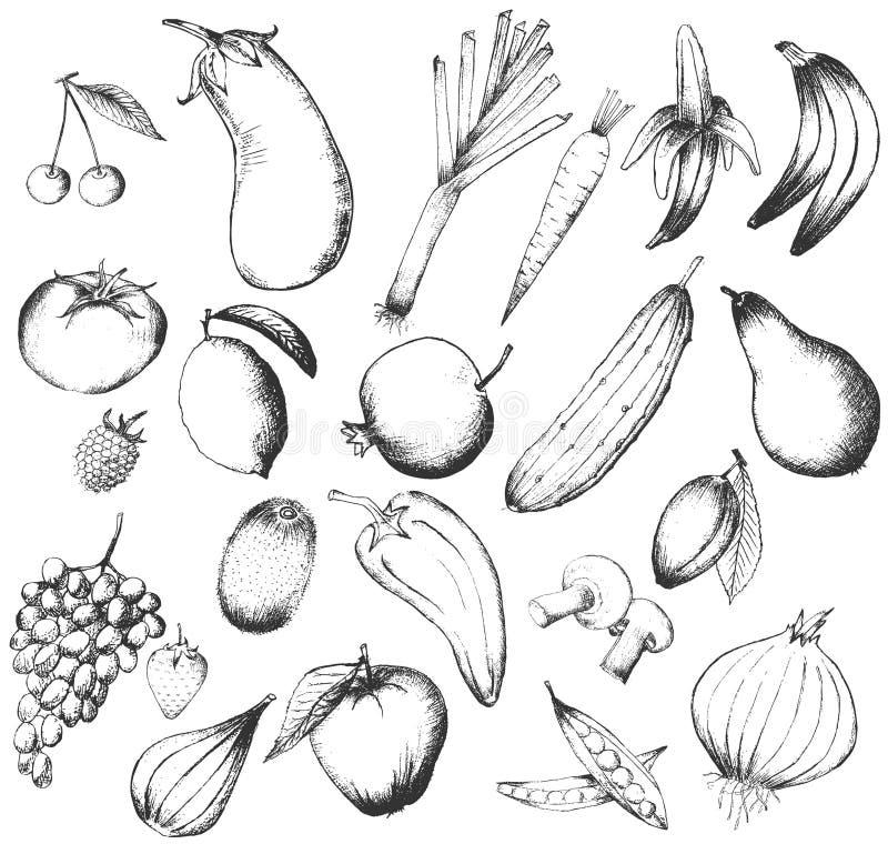 Ensemble de fruits et légumes tirés par la main photographie stock