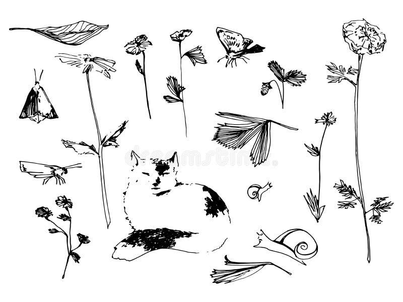 Ensemble de jardin Illustration de croquis de fleur, de papillon et d'escargot Image tirée par la main de vecteur illustration de vecteur