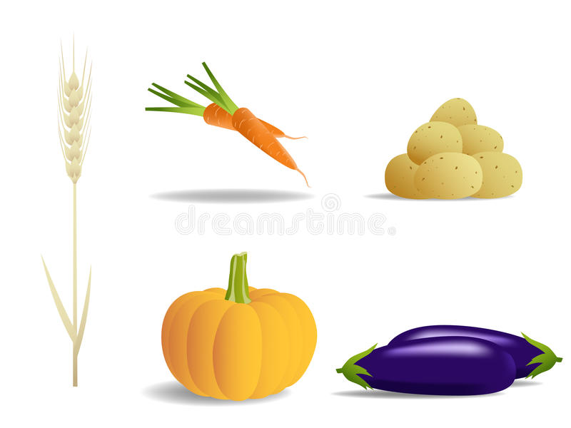 Ensemble de légumes illustration stock