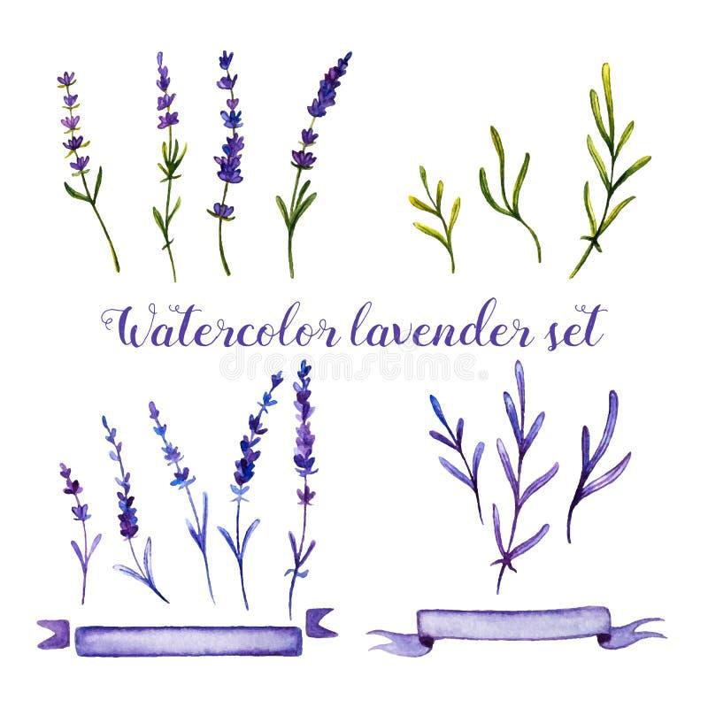 Ensemble de lavande et de rubans d'aquarelle illustration de vecteur
