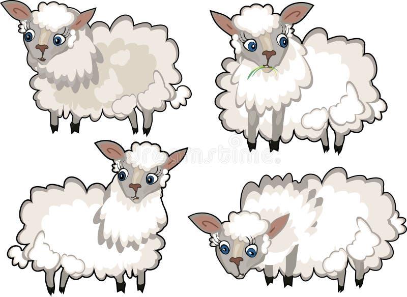 Ensemble de moutons mignons de bande dessinée avec la laine bouclée sur le fond blanc illustration stock