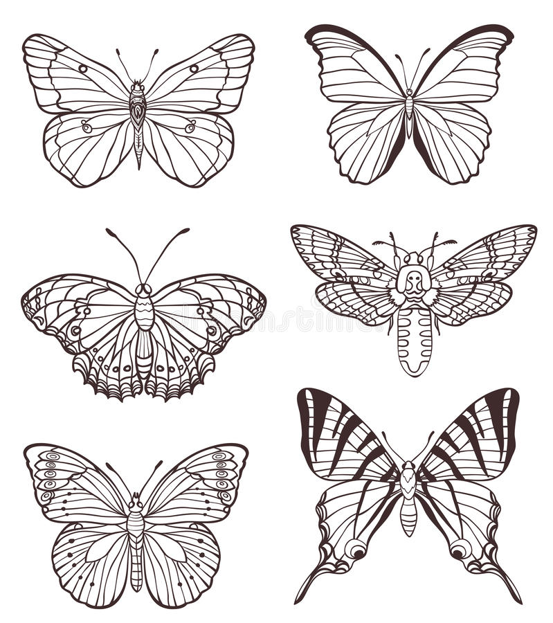 Ensemble de papillons tirés par la main illustration de vecteur