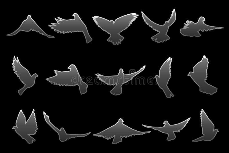 Ensemble de piloter les colombes grises sur le fond noir illustration stock