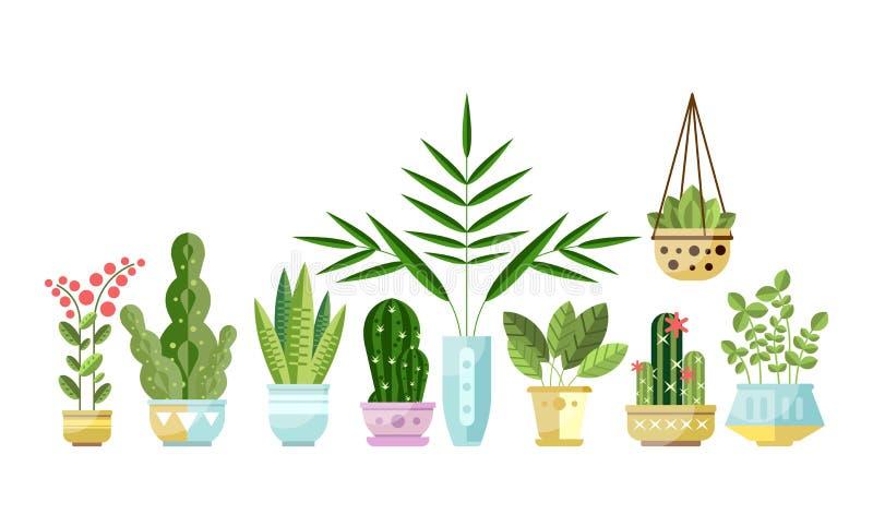 Ensemble de plantes d'intérieur colorées de style plat dans des pots se tenant dans la ligne Usines décoratives à la maison Colle illustration de vecteur