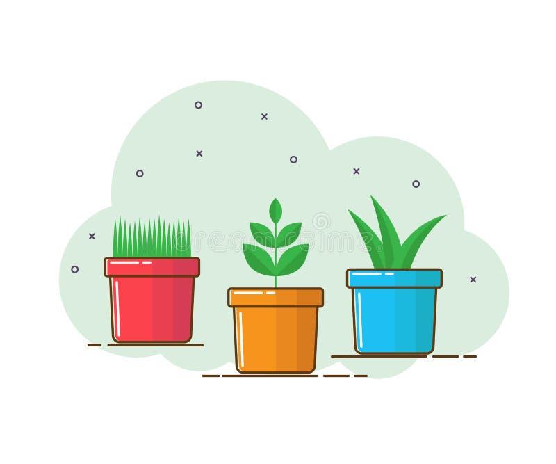 Ensemble de plantes d'intérieur dans des pots illustration stock