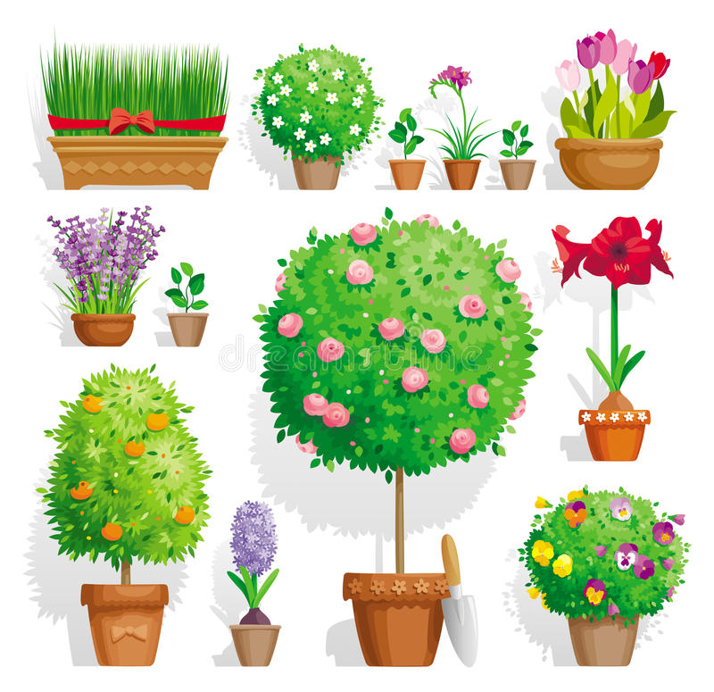 Ensemble de plantes en pot illustration stock