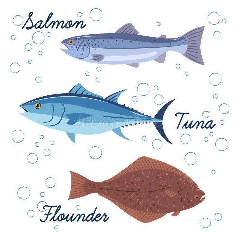 Ensemble de poisson de mer Icônes d'isolement par vecteur des poissons Saumons, thon et poissons plats illustration de vecteur