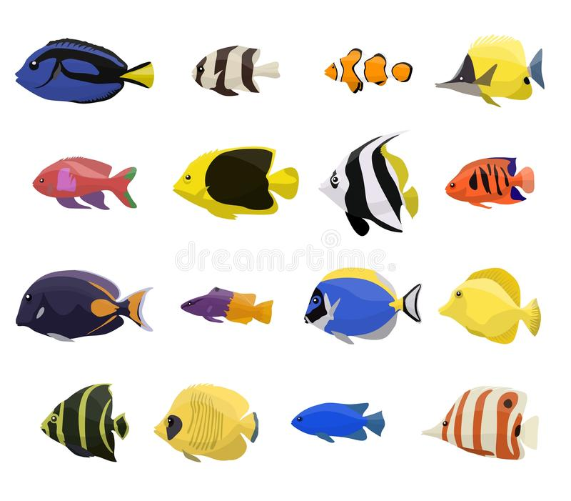 Ensemble de poissons de récif coralien illustration de vecteur