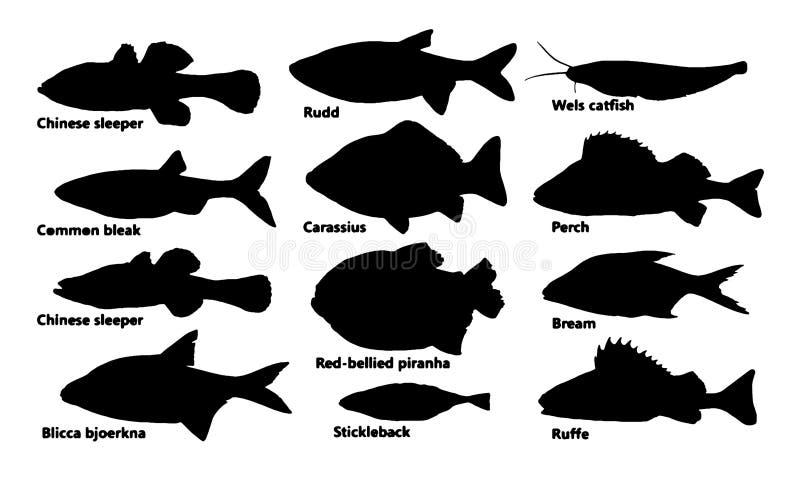 Ensemble de poissons de silhouette, vecteur illustration stock