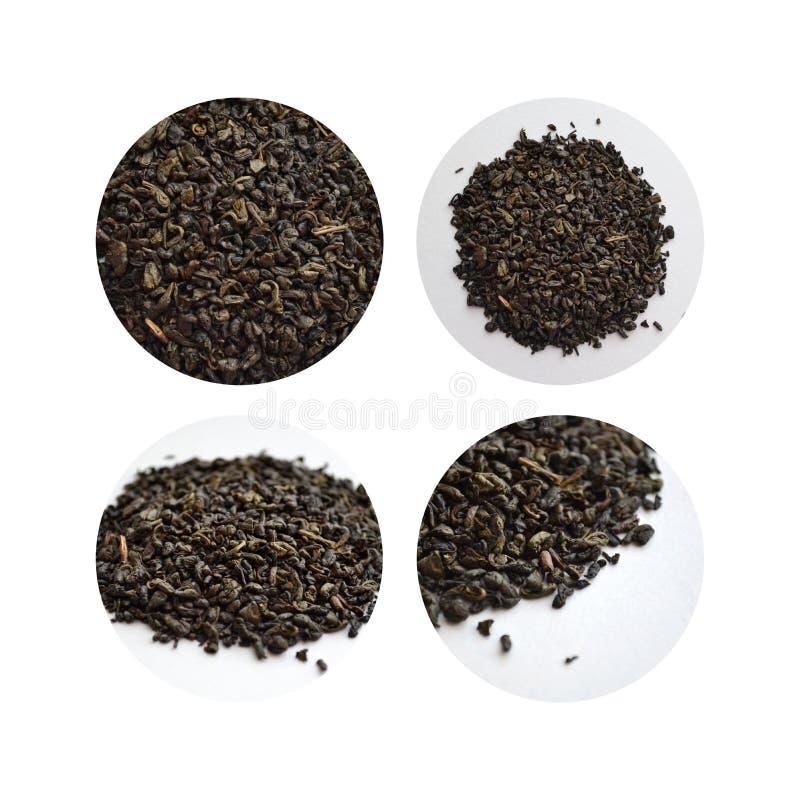 Ensemble de quatre images de thé vert dans cercles image stock