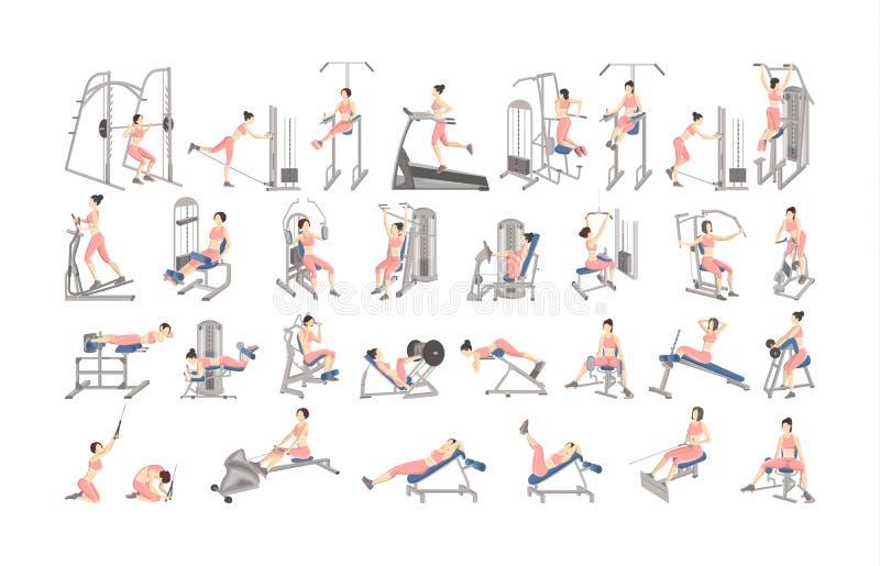 Ensemble de séance d'entraînement pour des femmes sur des machines d'exercice illustration de vecteur