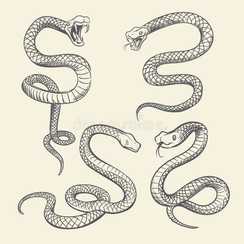 Ensemble de serpent de dessin de main Conception de vecteur de tatouage de serpents de faune d'isolement illustration libre de droits