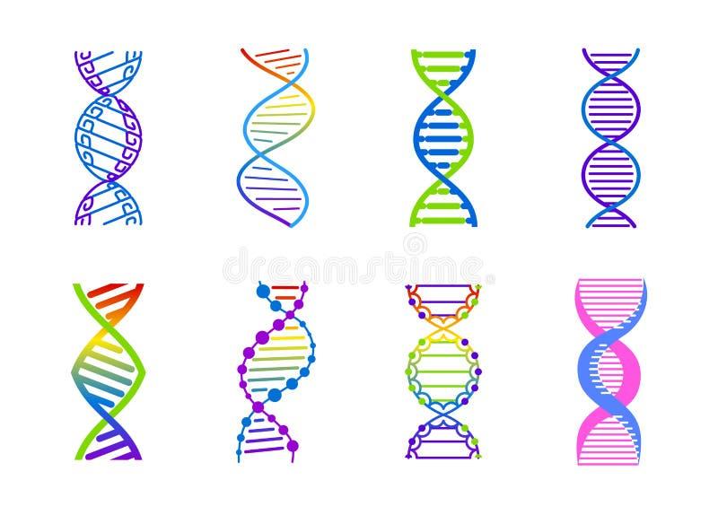 Ensemble de signe de mol?cule d'ADN, ?l?ments g?n?tiques et brin de collection d'ic?nes Illustration de gradient de couleur de ve illustration de vecteur
