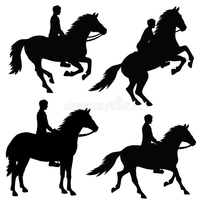 Ensemble de silhouettes d'isolement des chevaux illustration stock