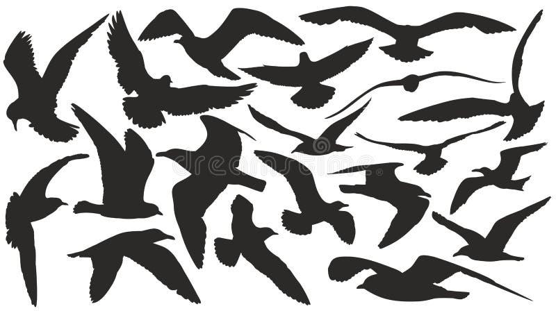 Ensemble de silhouettes des mouettes illustration libre de droits