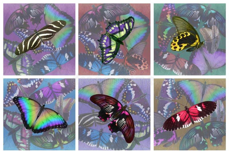 Ensemble de six caboteurs de boissons de papillon illustration stock