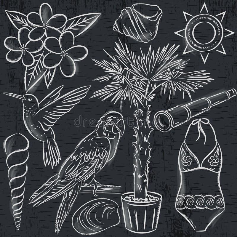 Ensemble de symboles d'été, costume de bain, perroquet, colibri, tre de paume illustration stock