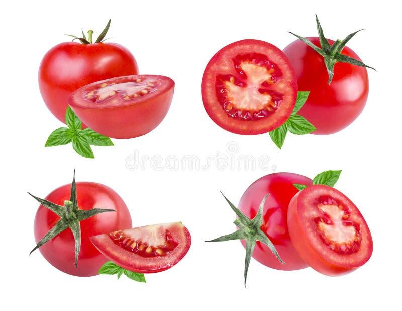 Download Ensemble De Tomates Rouges D'isolement Sur Le Blanc Photo stock - Image du fond, couleur: 76089700