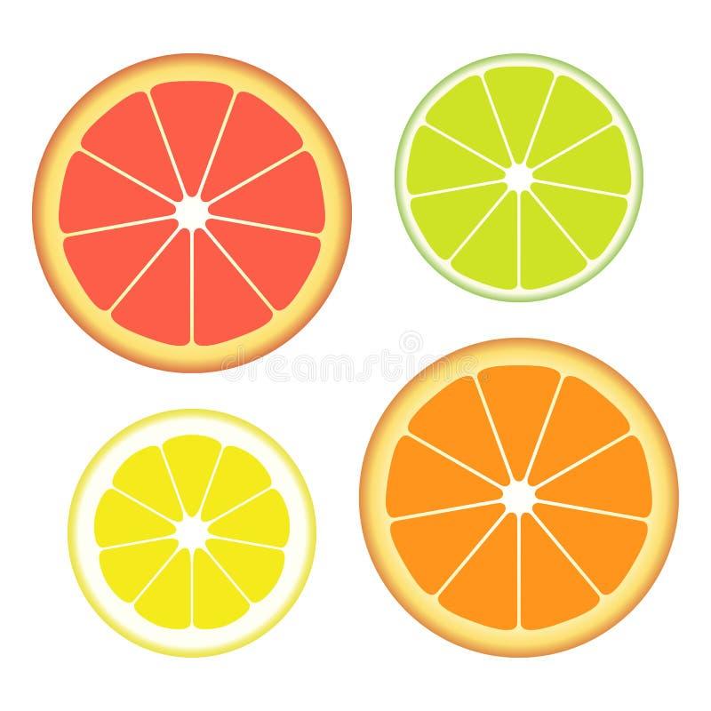 Ensemble de tranches de différents agrumes d'isolement sur le fond blanc Fruit juteux Illustration de vecteur illustration libre de droits