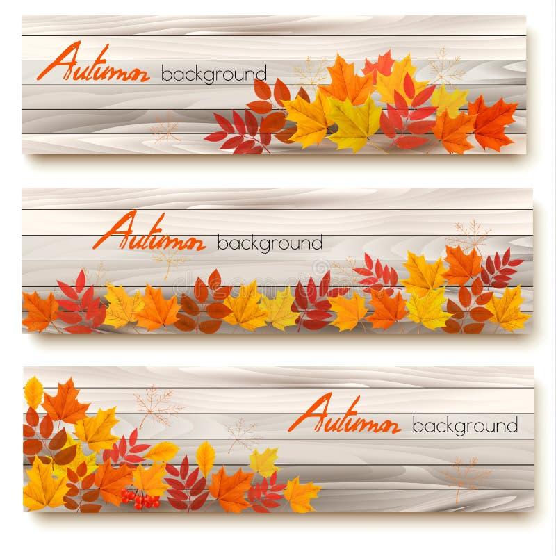 Ensemble de trois bannières de vecteur avec les feuilles d'automne colorées illustration libre de droits