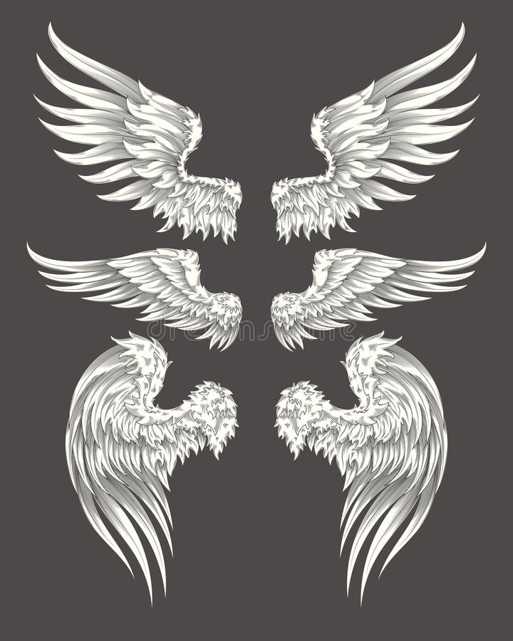 Ensemble de vecteur angélique ou d'ailes d'oiseau illustration stock