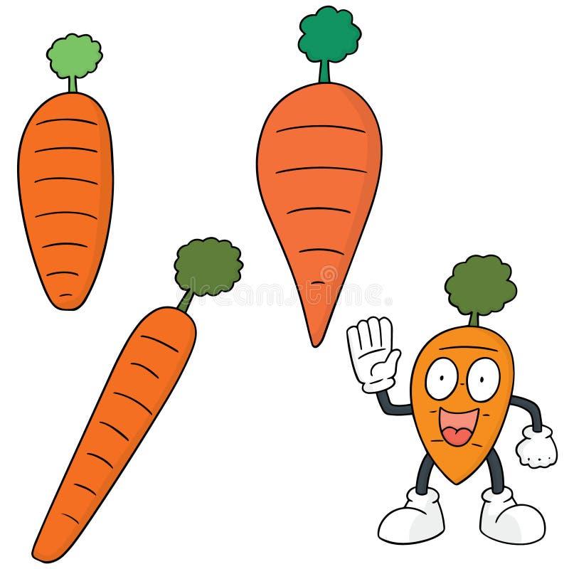 Ensemble de vecteur de carotte illustration de vecteur