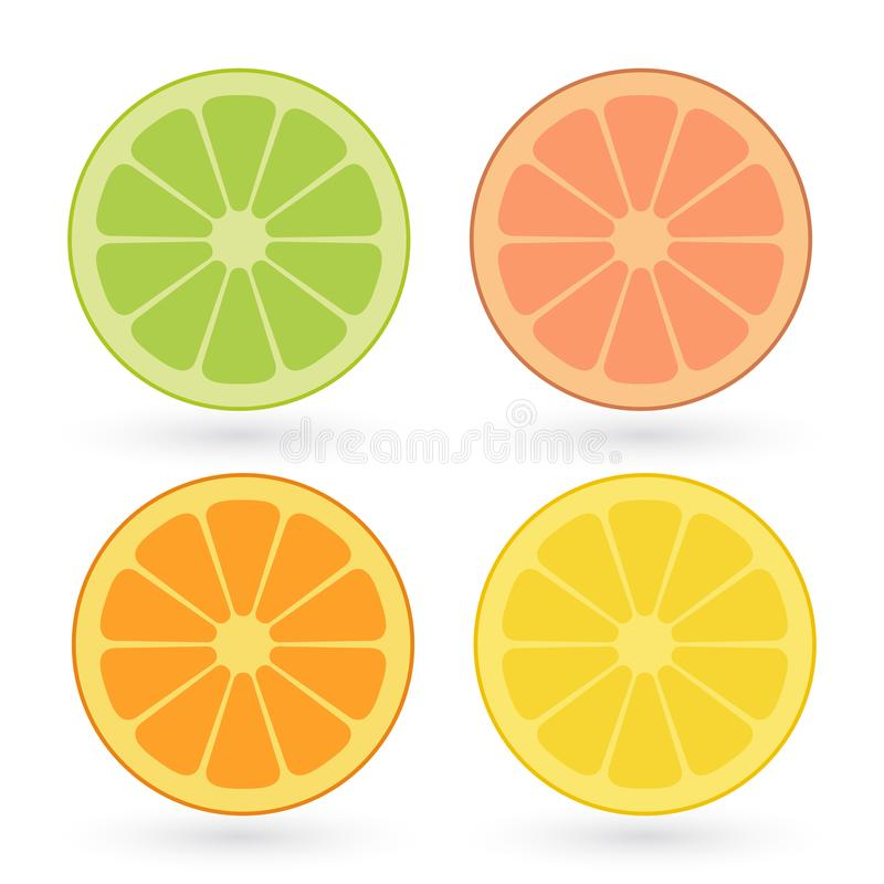 Ensemble de vecteur de citron, orange, chaux, tranches de pamplemousse d'isolement sur le fond blanc illustration de vecteur