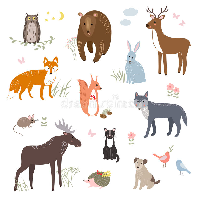 Ensemble de vecteur d'animaux mignons : maculez, soutenez, lapin, écureuil, loup, hérisson, hibou, cerf commun, chat, chien, sour illustration de vecteur