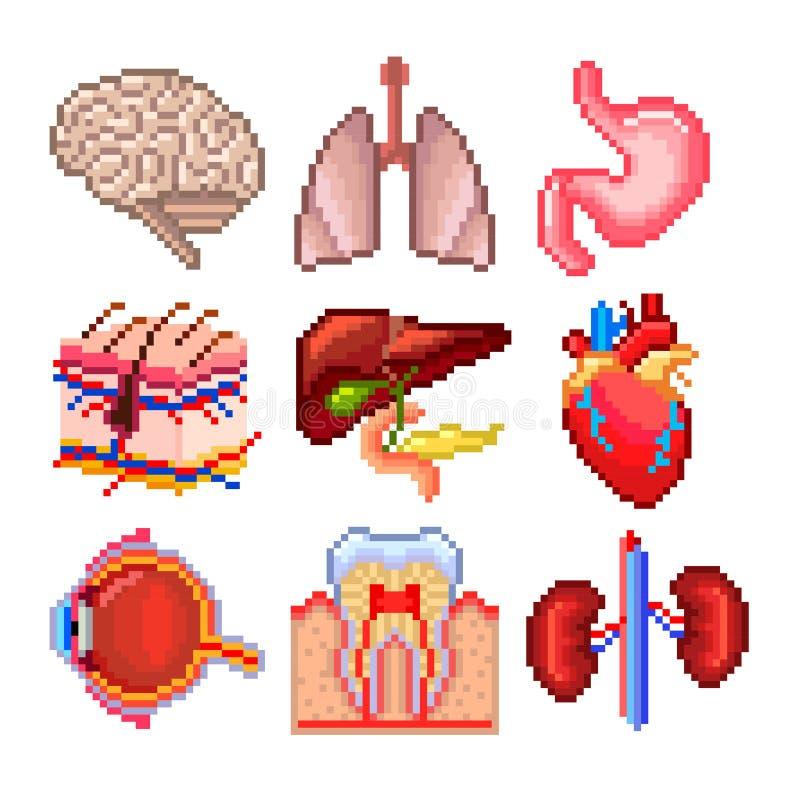 Ensemble de vecteur d'icônes de pièces de corps humain de pixel illustration de vecteur