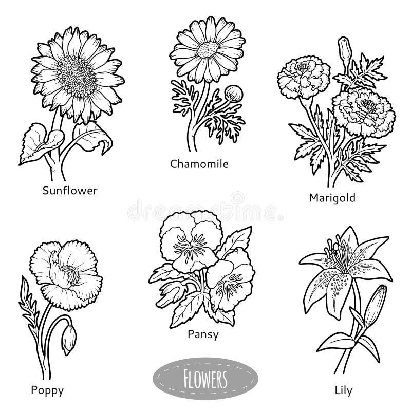 Ensemble de vecteur de fleurs, collection noire et blanche illustration de vecteur