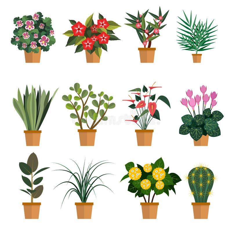 Ensemble de vecteur de fleurs Illustration avec différents types icônes de fleur de pot d'isolement sur le fond blanc illustration libre de droits