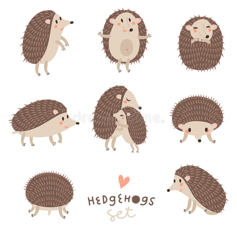 Ensemble de vecteur de hérissons mignons illustration stock