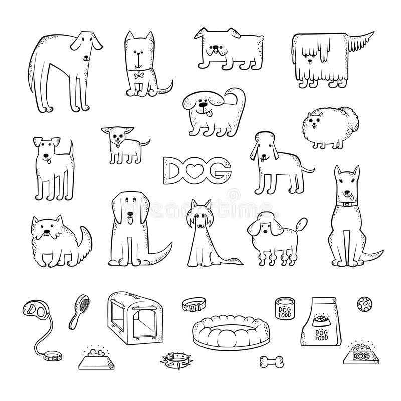 Ensemble de vecteur de différentes races de chien Articles pour s'inquiéter d'un animal familier et l'alimentation Caractères drô illustration libre de droits