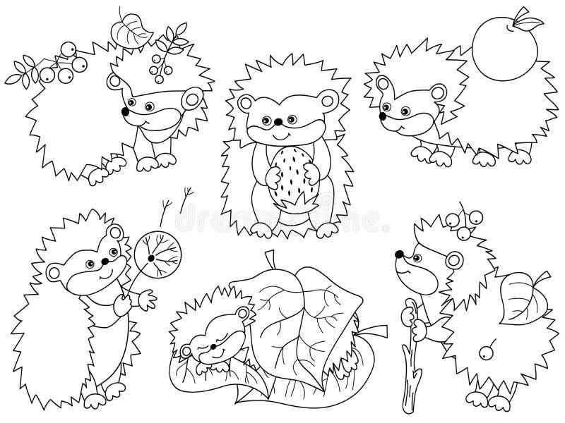 Ensemble de vecteur de hérissons mignons de bande dessinée illustration libre de droits