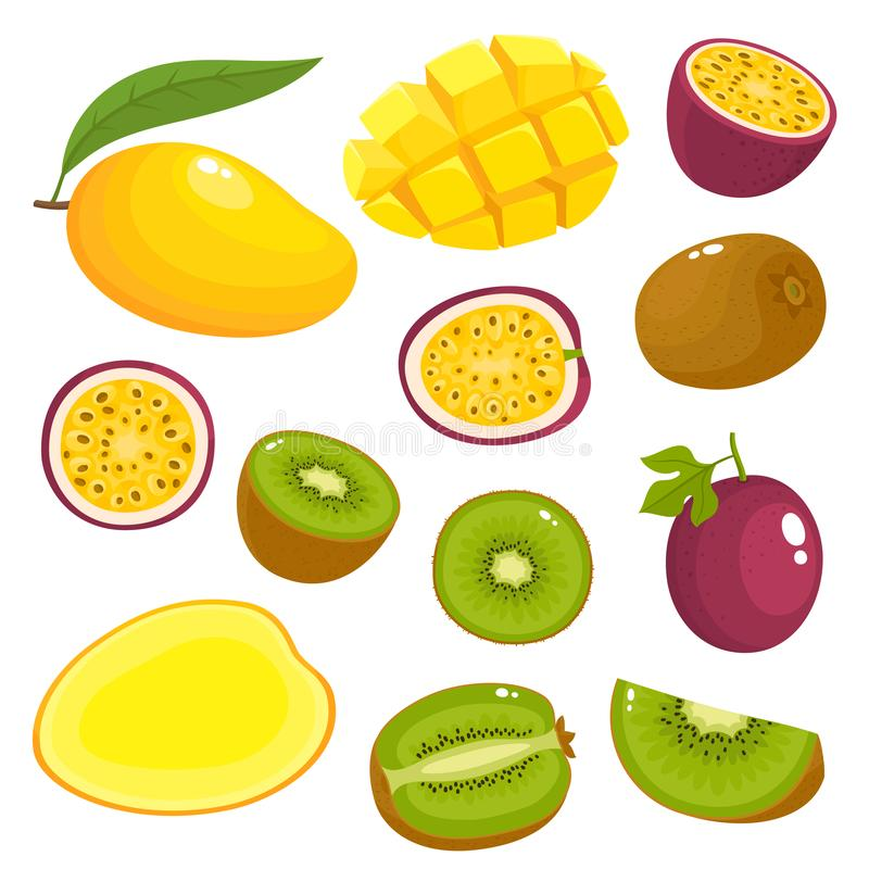 Ensemble de vecteur de kiwi coloré, mangue, passionfruit d'isolement sur le blanc illustration de vecteur